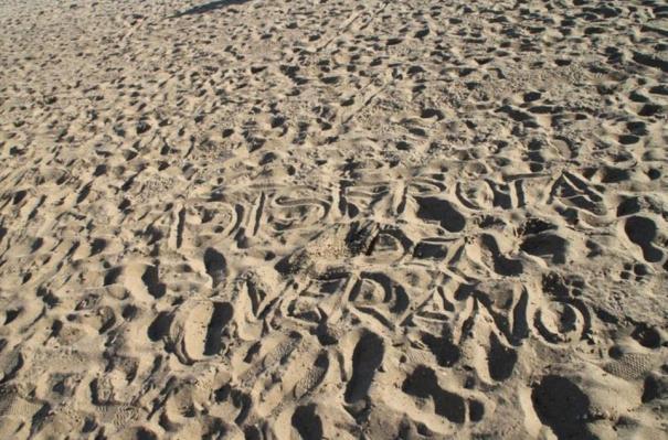 Inés Pellón Sta. Kilda Beach Australia